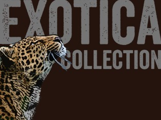 Ro London Exotica Collection