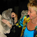Ro London - Our iconic koala at WWF 25th Anniversary Gold Coast.